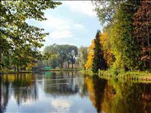 Bus excursion to Pavlovsk