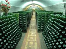 Excursion to Abrau Durso with Wine Tastings